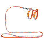 Hunter Smart Katzengarnitur Seventies orange