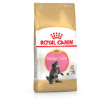 Royal Canin Breed Maine Coon Kitten 4 kg